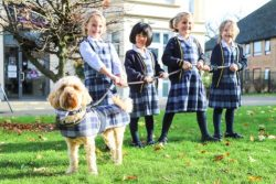 Burgess Hill Girls independent day and boarding school West Sussex